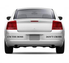 Clear Bumper Stickers
