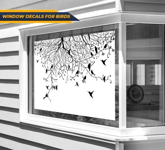 Window Decals For Birds